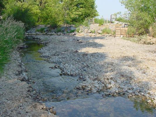habitat-tributary4