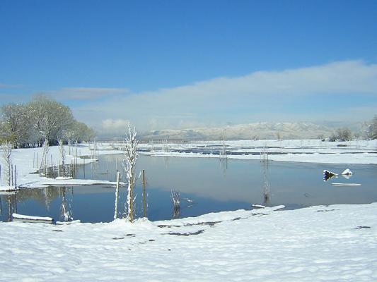 hobble-creek-winter