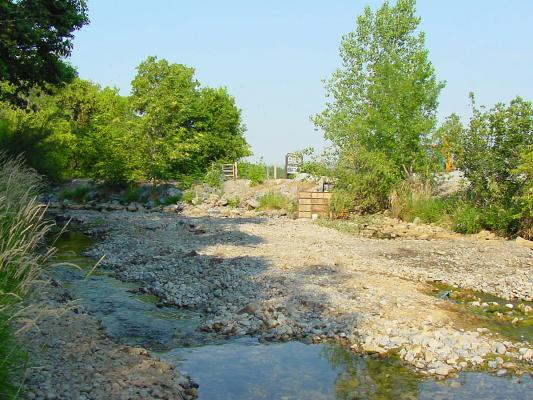 Provo-River-bank